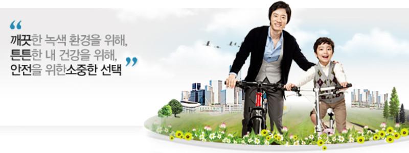 LIG 자전거 보험